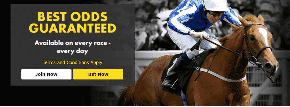What is Enhanced Odds and How Does It Work?