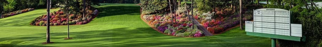 masters long picture