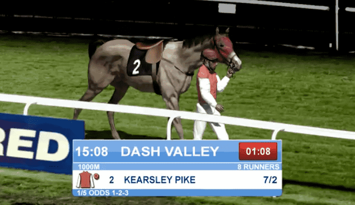 tonybet horse racing