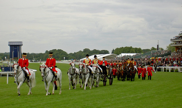 royal ascot queens horses